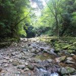 マイナスイオン満載!三重県にある赤目四十八滝に行ってきました。