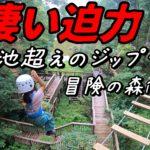 冒険の森in王寺。初めてのツリートップアドベンチャーと150m越えのジップラインは圧巻!